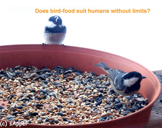[Image: bird-food.jpg]